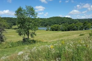 Cross Plains Real Estate Photo 8