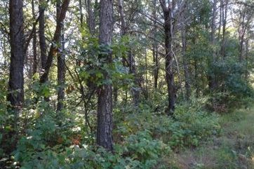 Lot 94 Timber Trail Germantown, WI 53950 - Image
