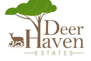 IDX_35L3 Deer Haven Tr Photo 35