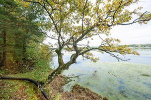27W3724 Oak St Photo 27