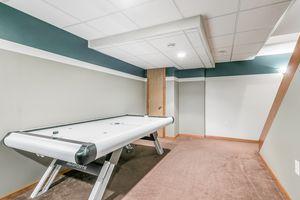 Recreation Room6702 Annestown Dr Photo 39