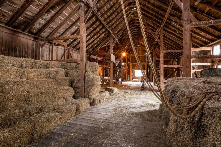 Barn Photo #28