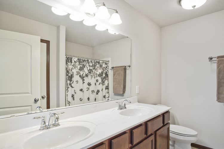 Master Bathroom Photo #20
