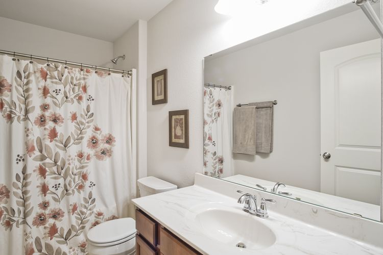 Main Upstairs Bath Photo #28