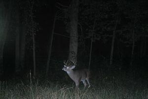IDX_580 Acres County Road O Photo 5