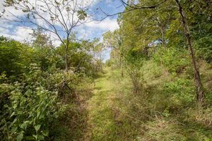 IDX_11L1 Ox Trail Way Photo 11