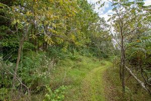 1868909-9.jpgL1 Ox Trail Way Photo 9
