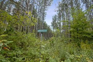 IDX_171886 Amherst Dr Photo 17