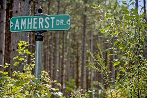 IDX_191886 Amherst Dr Photo 19
