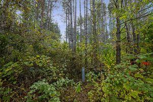 IDX_21886 Amherst Dr Photo 2