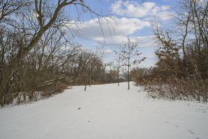 368584 Klevenville-Riley Rd Photo 36