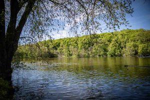 IDX_54355 N Rivers Edge Dr Photo 5