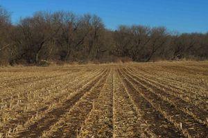 IDX_26488 County Road C Photo 2