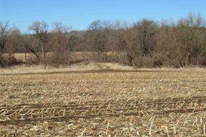 IDX_36488 County Road C Photo 3