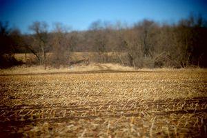 IDX_46488 County Road C Photo 4