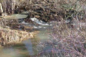 IDX_66488 County Road C Photo 6