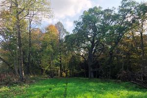 IDX_3414779 County Road MM Photo 34